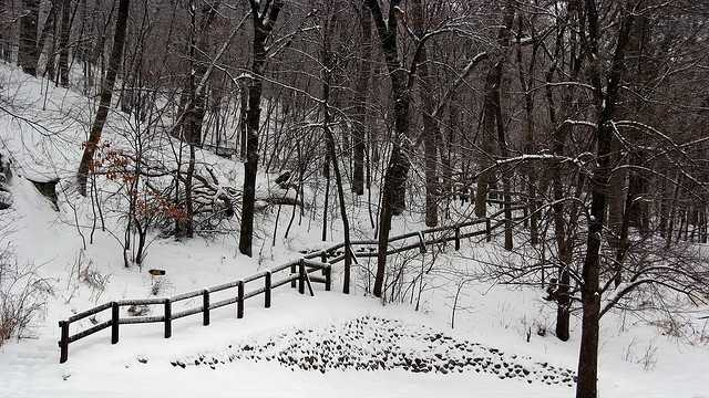 snow in Boone, NC