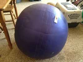This used exercise ball was sold for $1.25