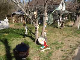 A couple says there nothing negative about morbid dolls that adorn their yard. FULL STORY