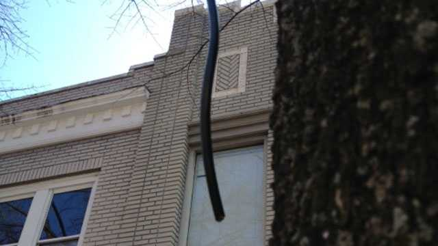 cord cut
