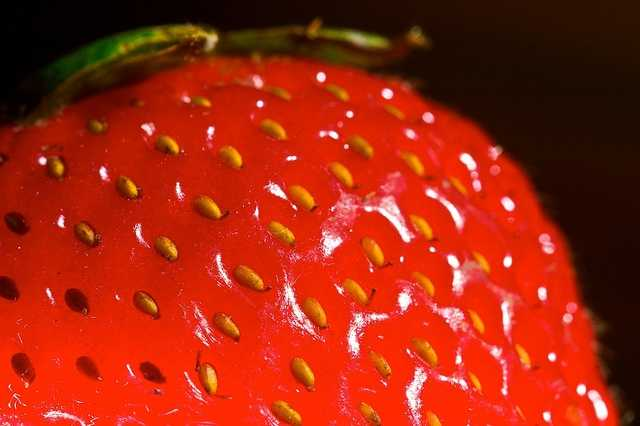 Strawberries are the only fruit that wear their seeds on the outside. The average berry is covered with about 200 seeds.
