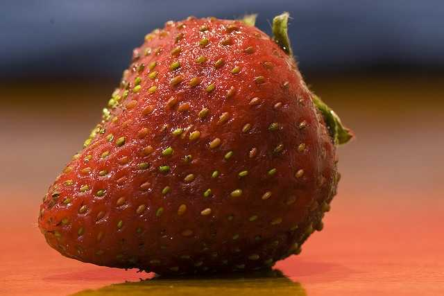 There is a museum in Belgium just for strawberries