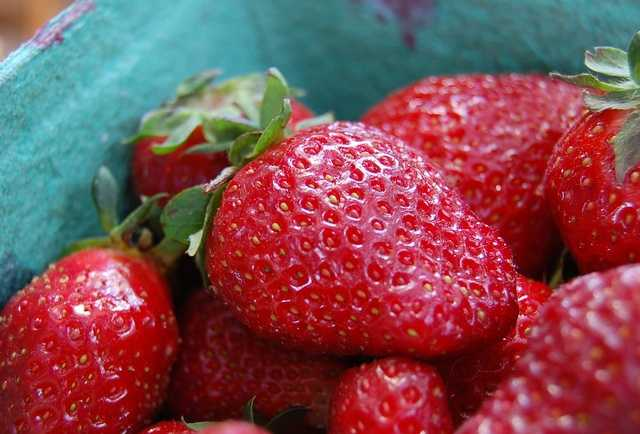 Fresh strawberries were once used as a toothpaste, since the juice cleaned discolored teeth.
