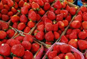 It's strawberry season for much of the United States, and though most of us enjoy them, there's a lot of interesting trivia about this beloved berry you may not know.