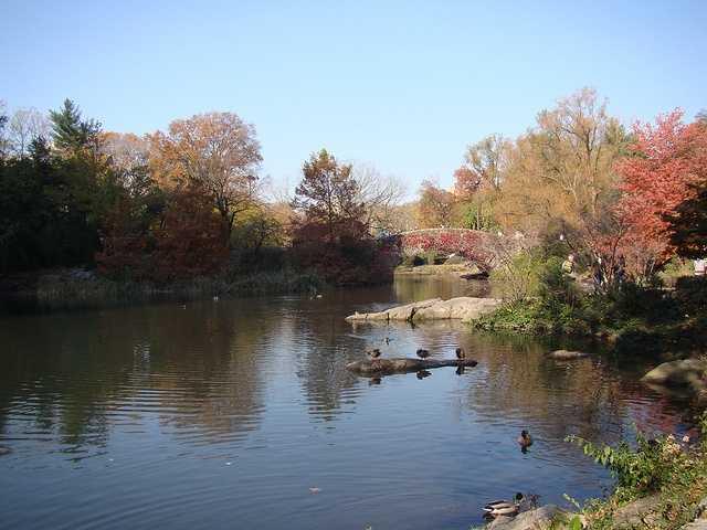 1. Central Park