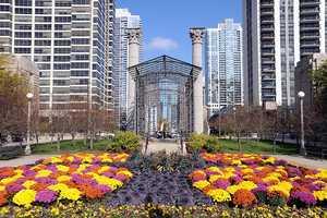 4. Millennium Park, Chicago