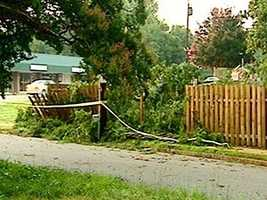 Storms knocked down this tree in the front yard of the salvation Army on Rutherford Street in Greenville.