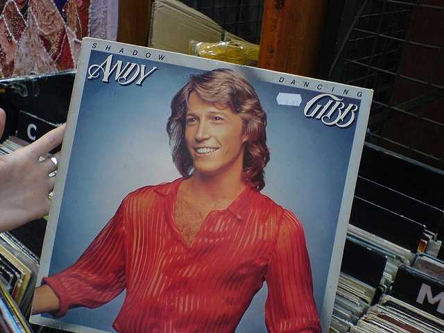 Andy Gibb, Bee Gees singer