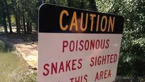 snake warning sign
