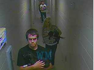 Anderson County investigators are looking for four individuals they say stole three dogs from a rescue agency.