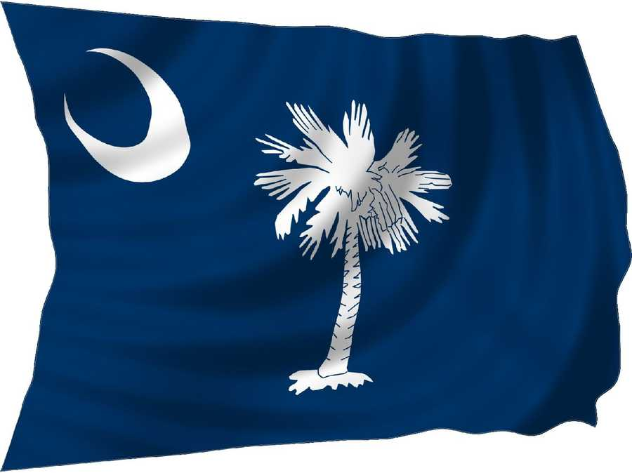 The palmetto tree was added to the flag because it was credited as being instrumental in Col. William Moultrie's defense of Sullivan's Island against an attack by British warships in June 1776. Instead of destroying the fort, cannonballs fired from British ships sank into the soft, tough Palmetto wood.