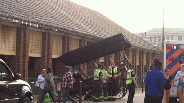horse carriage.jpg