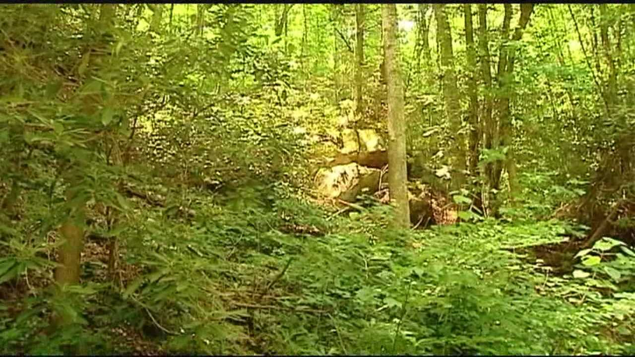 Park rangers rescue a man at Jones Gap State Park who went there to take photos but ended up getting lost and stuck in a vine.