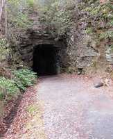 Visit the Stumphouse Tunnel in Oconee County. Located about 7 miles northwest of Walhalla on Hyw 28, the 1,617 foot long Stumphouse Tunnel is an oddity. Started in 1852 to connect Charleston to Knoxville and eventually on to Cincinnati, the Civil War—and lack of funds—brought construction to a halt. While there were various efforts by the Blue Ridge Railroad to revive the tunnel, none of them came to pass and it stands today as a monument to the efforts of pre-Civil War engineering. For more information, click HERE.