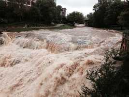 Reedy River: Photo by Joe and Paula Simpkins