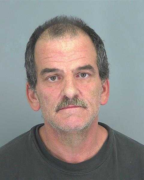 Deputies say Mark Anthony McComas is accused of trying to run over a deputy with a stolen pickup.