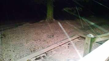 Snow from Patsy Bright