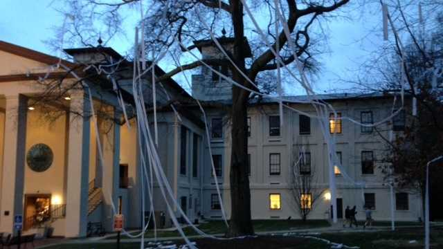 Students celebrated Wofford's SoCon Championship by throwing toilet paper on the trees around the Old Main Building on campus Monday night.