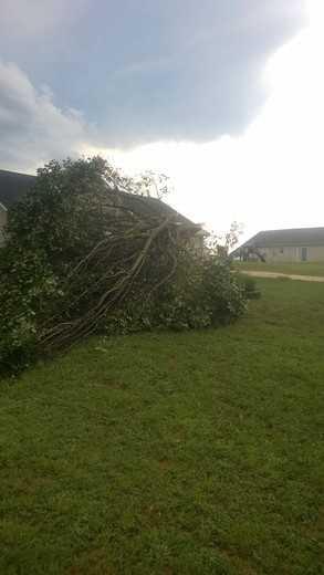 Grassy Pond area storm damage
