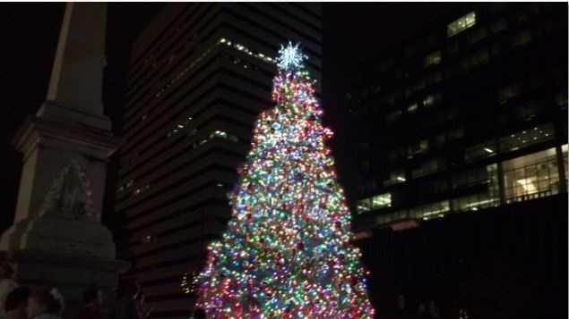 A lighting ceremony for South Carolina's state Christmas tree kicked off the holiday season.