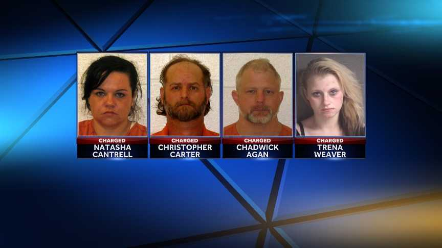 Natasha Cantrell, Christopher Carter, Chadwick Aga: charged with abduction of children &#x3B; Trena Weaver: charged with child abuse.
