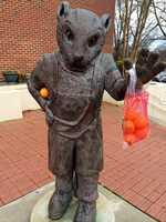 Tiger outside Memorial Stadium celebrating Orange Bowl win