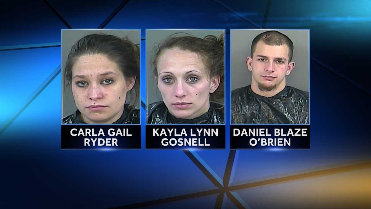 Kayla Lynn Gosnell, 23, of Greer and her two passengers Daniel Blaze O'Brien, 22, of Travelers Rest and Carla Gail Ryder, 22, of Liberty were arrested following a morning pursuit that began in the city limits of Anderson, and ended after a crash on Northbound 1-85 near mile marker 27.