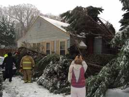 Tree falls into home in Travelers Rest