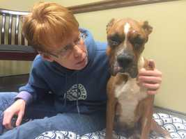 Amara was picked up by animal control officers in late January. Now a rescue is trying to help her regain her health.