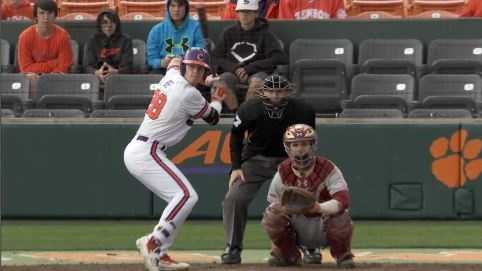 Seth Beer, Clemson Baseball