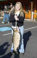 According to the N.C. Wildlife Resources Commission, the state record rainbow trout was caught by Leah Johnson on Jan. 28, 2006. The record breaking fish weighed 20 lbs 3 oz and was caught on the Horsepasture River in Jackson County, N.C. Johnson was using a Rapala lure.