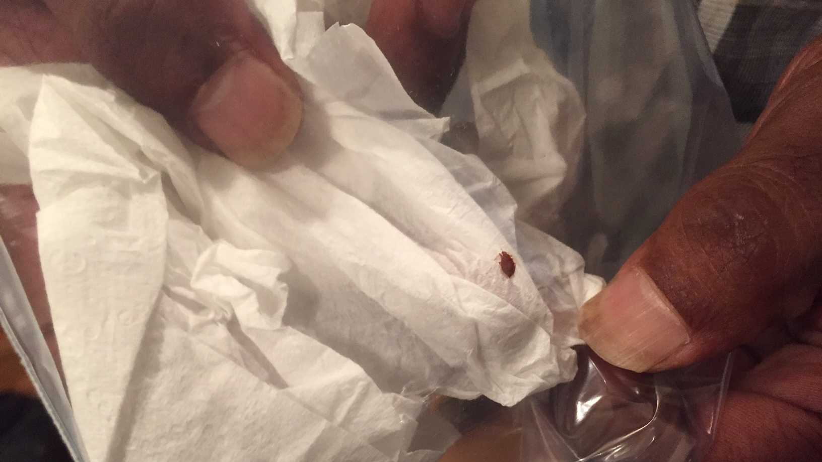 A tenant at Towers East shows a bedbug found in their apartment
