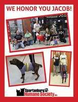 From Spartanburg Humane Society Inc.