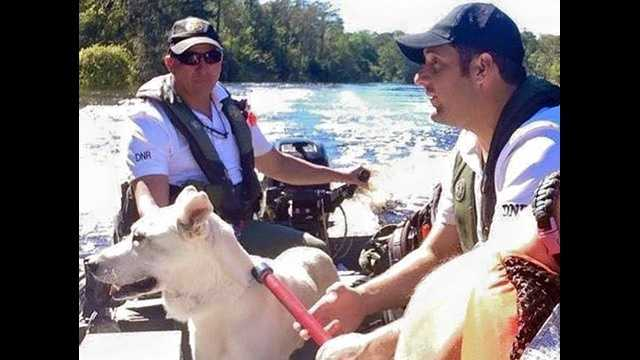 animal rescues Marion County.jpg