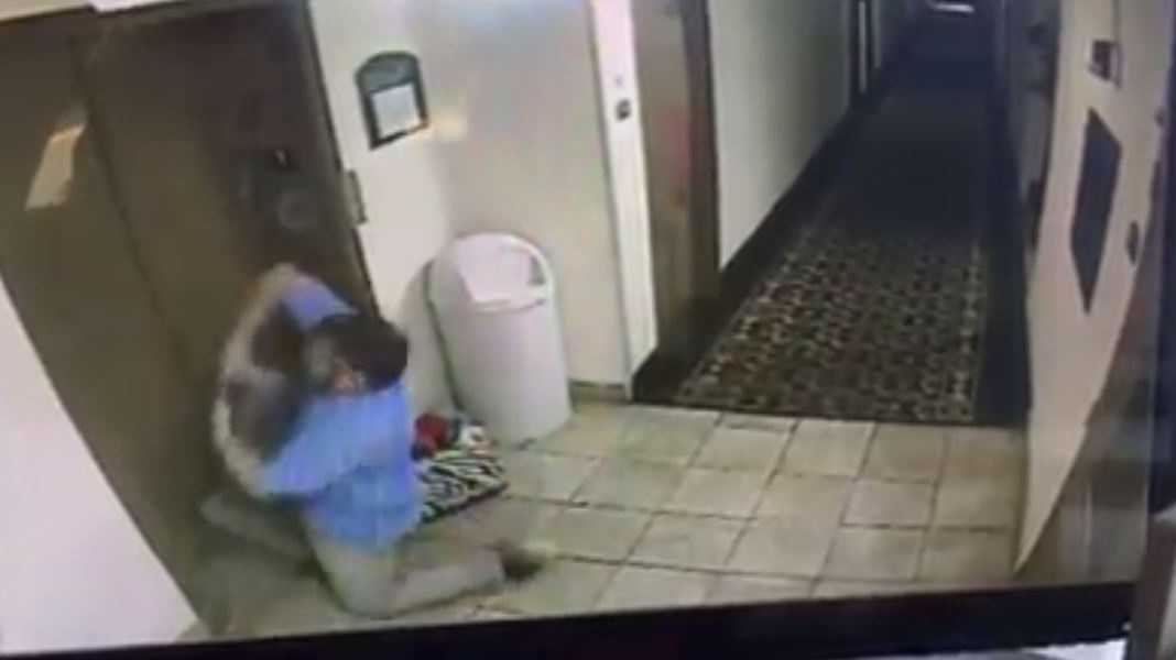 Hotel GM saves dog from elevator death