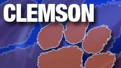 Clemson generic