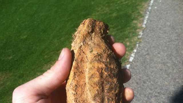 Vintage WWII Weapon Found On Baseball Field