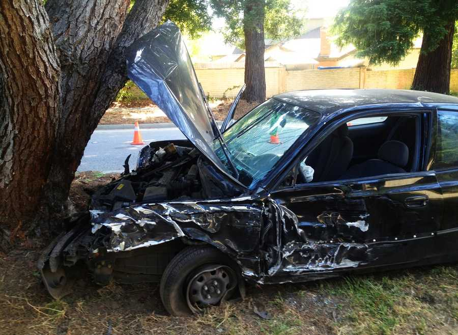 A man crashed head-on into a tree on Bay Drive and Meder Street in Santa Cruz on July 11. Emergency crews said they found the driverunconscious and he was airlifted to a trauma center with life threatening injuries.
