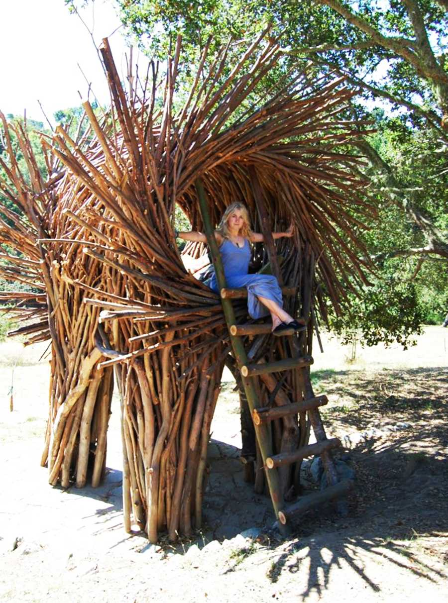 "To construct his large-scale works of art, Fann harvests branches from eucalyptus trees throughout Big Sur and makes each one by hand.""I like to instill that sense of imagination and play with all people, not just children, adults also,"" Fann said."