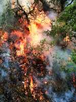 Big Sur Pfeiffer Fire