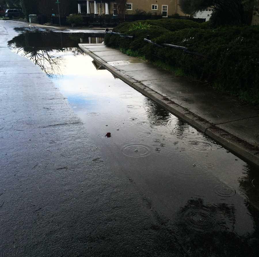 Big puddle in Aptos (Dec. 6, 2016)