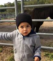 Jacob Vargas, 2, of Soledad, was missing for seven hours during an Amber Alert after the car he was left alone in was stolen.
