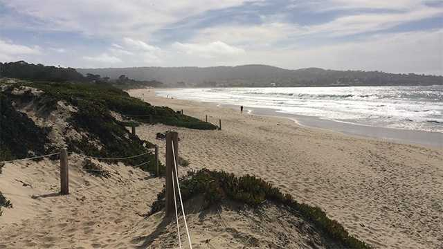 Monterey working to ban alcohol on all beaches for Best beach in monterey ca