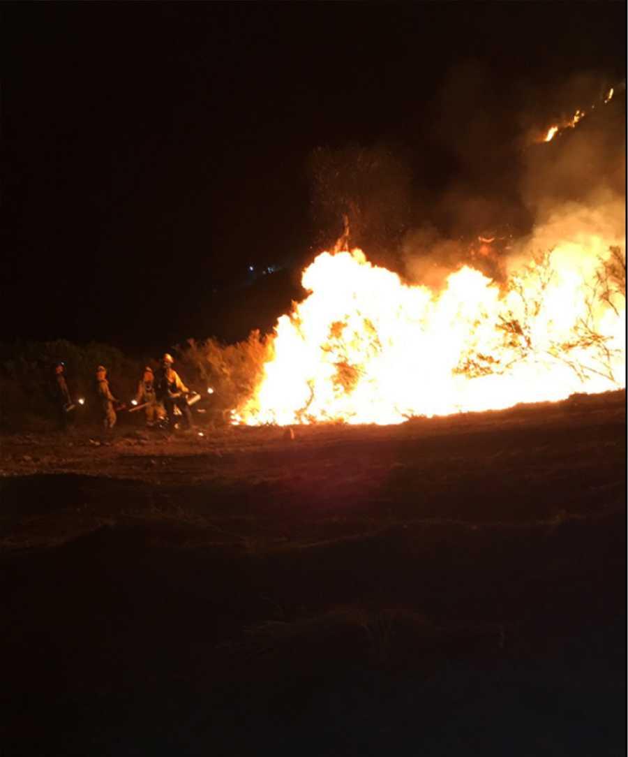 Coleman Fire