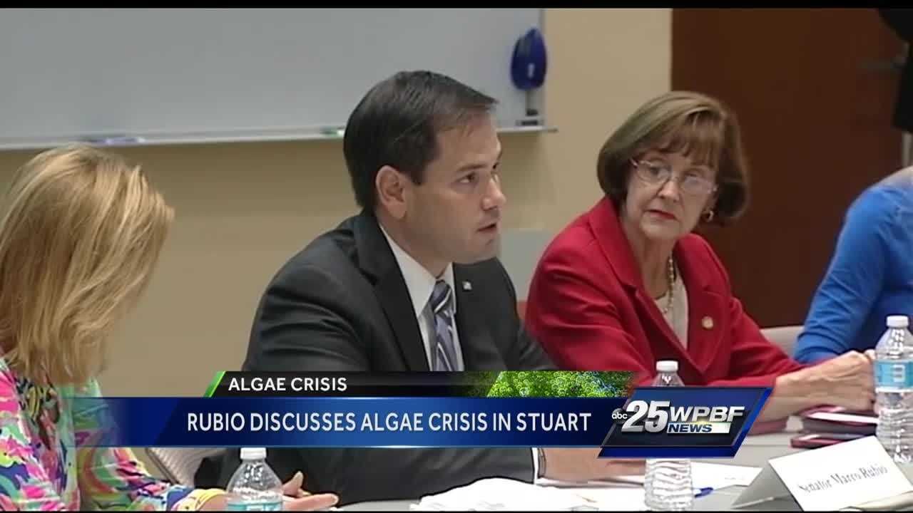 Sen. Marco Rubio, R-Fla., met with researchers and officials in Stuart Monday to discuss efforts to stop the algae crisis that's affected much of the state.