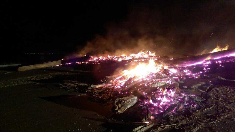 A large pile for driftwood caught fire Sunday, April 2, 2017, at Folsom Lake, the South Placer Fire District said.