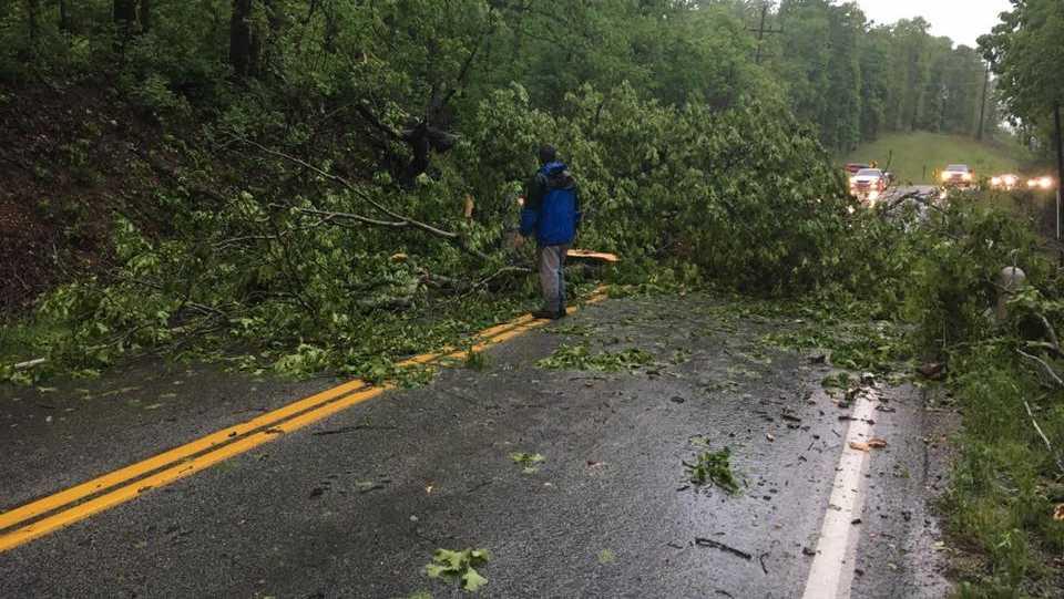Tree blocks the entrance to Noel, Missouri Saturday morning