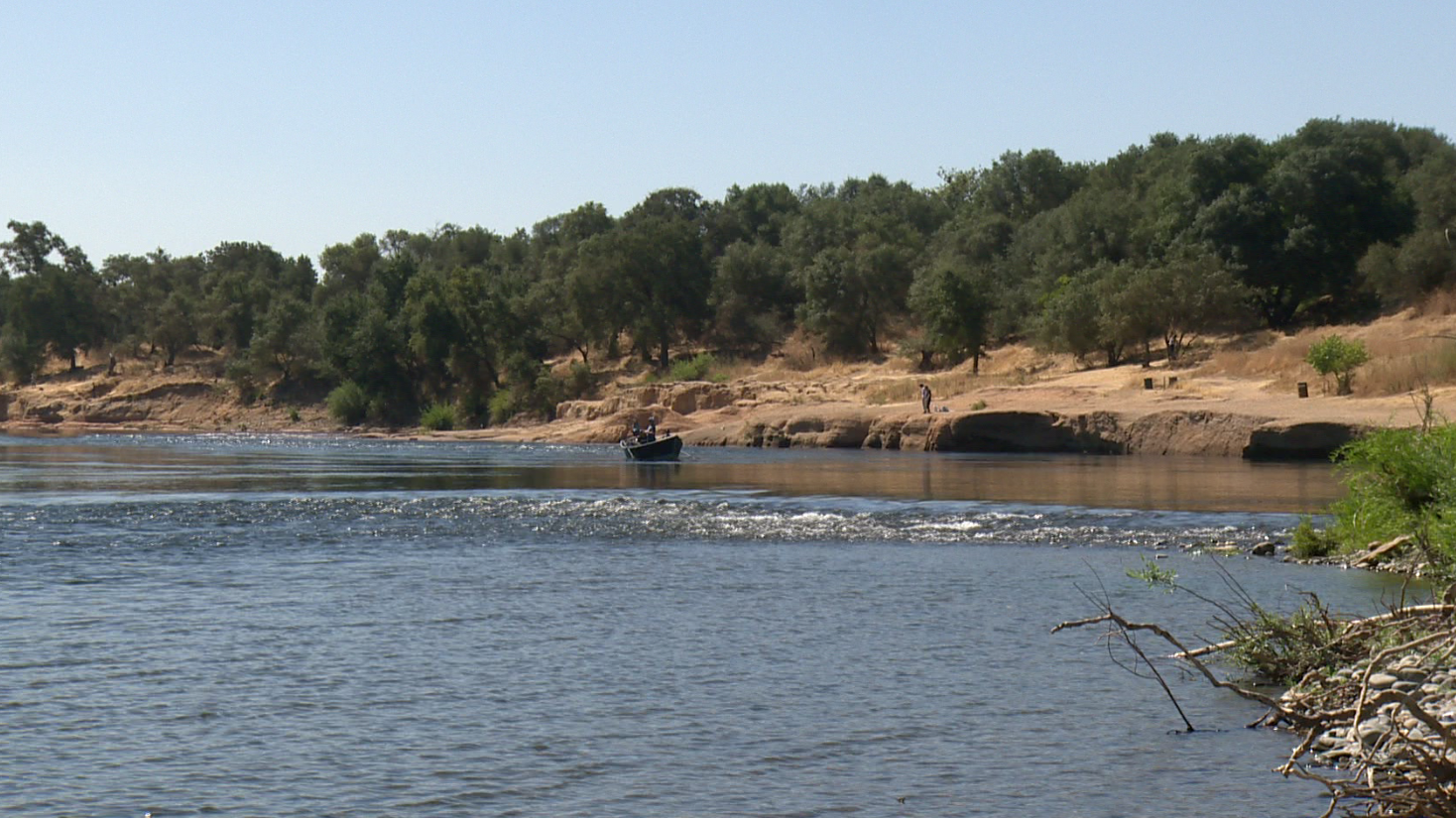Fire pulled a body of a man in his 20s from the American River Sunday.
