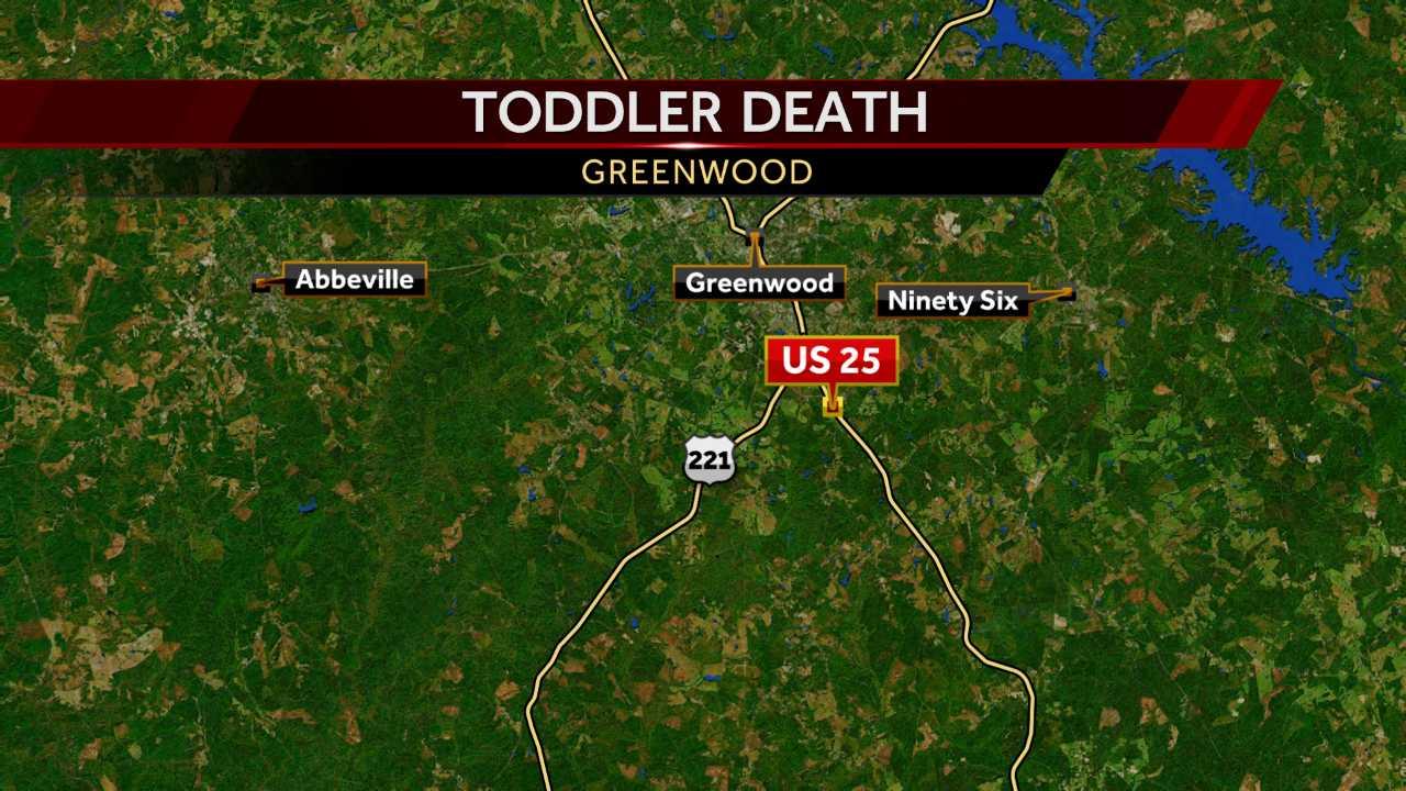 2-year-old struck by car, dies