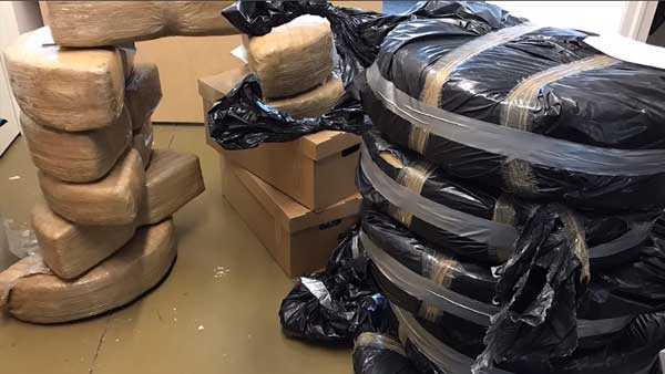 DEA: $1M in pot smuggled into U.S. via Mexican-made Ford Fusions